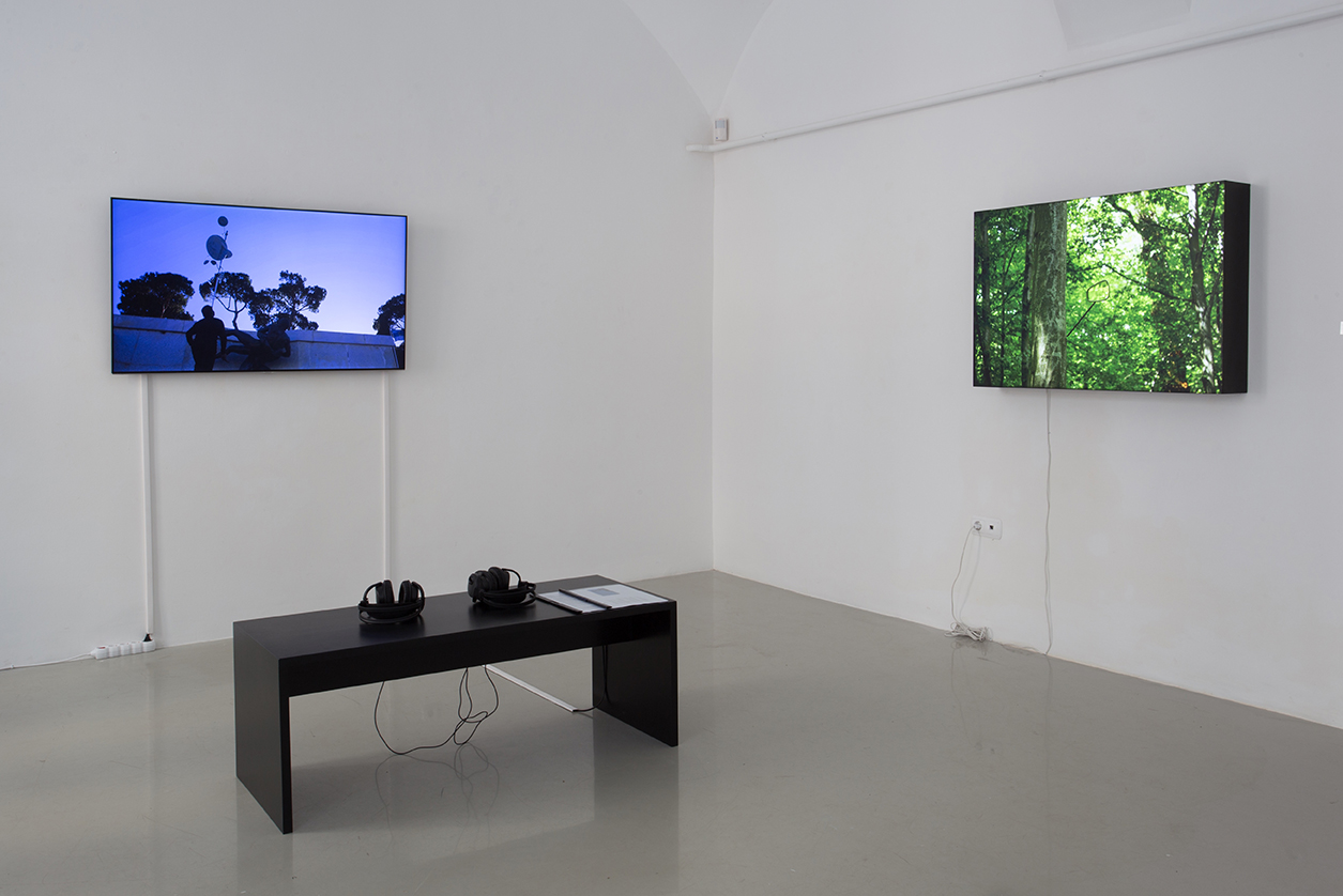 Installation view HIWA K: Pre-Image (Blind as the Mother Tongue), and Alex Mirutziu, Unit of Survival, Kisterem Gallery 2018