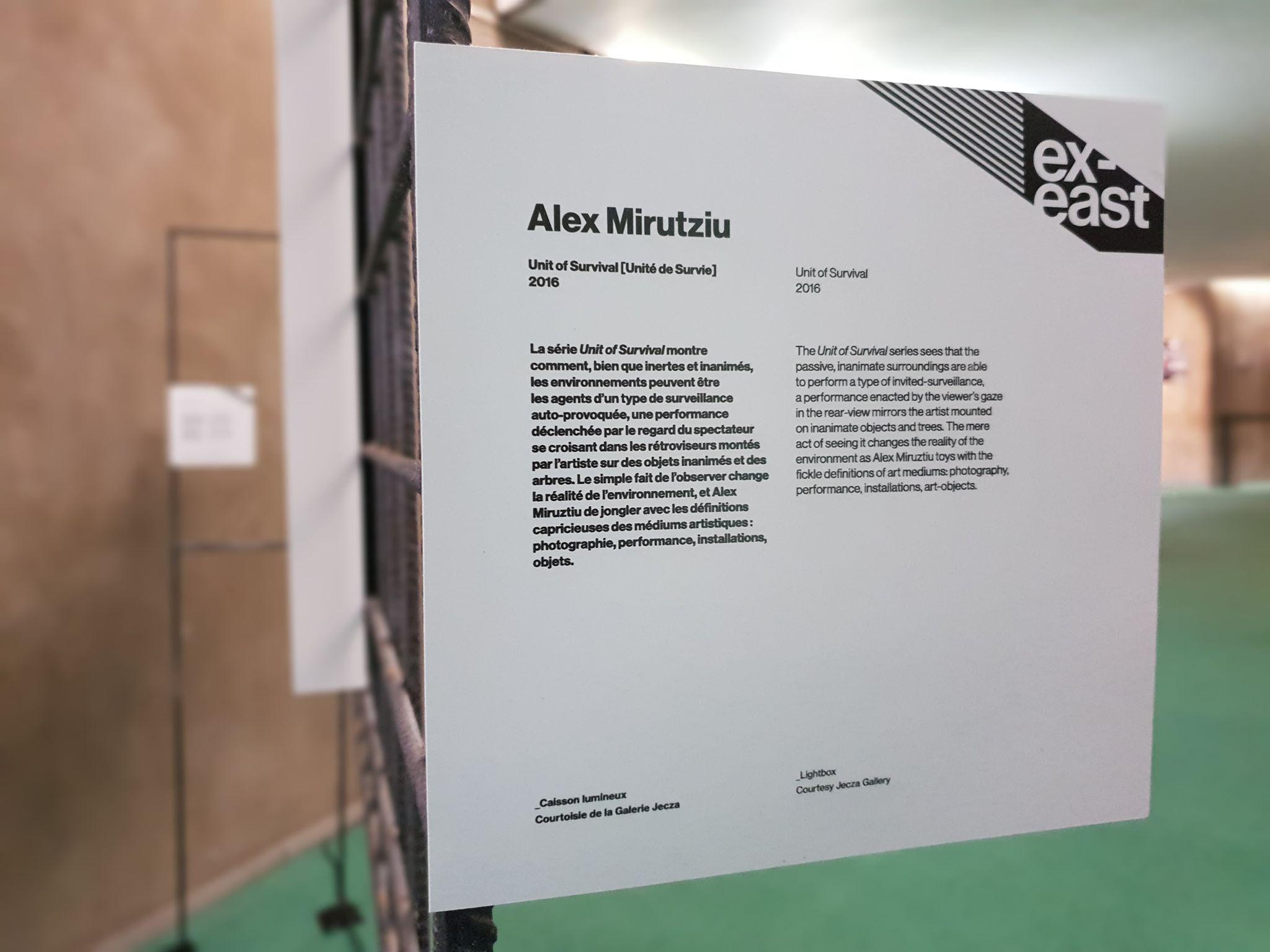Alex-Mirutziu-Unit of survival-2.jpg