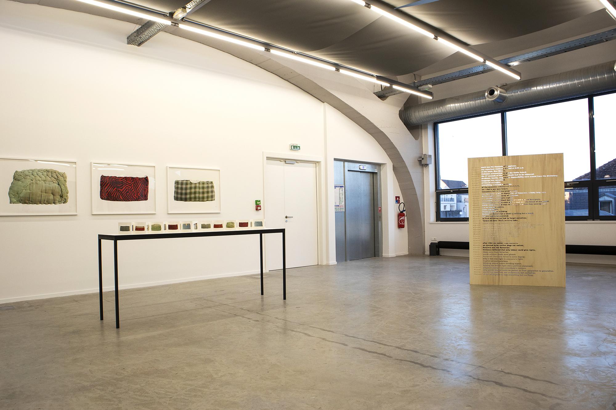 Alex-Mirutziu-Because-Kunsthalle-Mulhouse-2.jpg