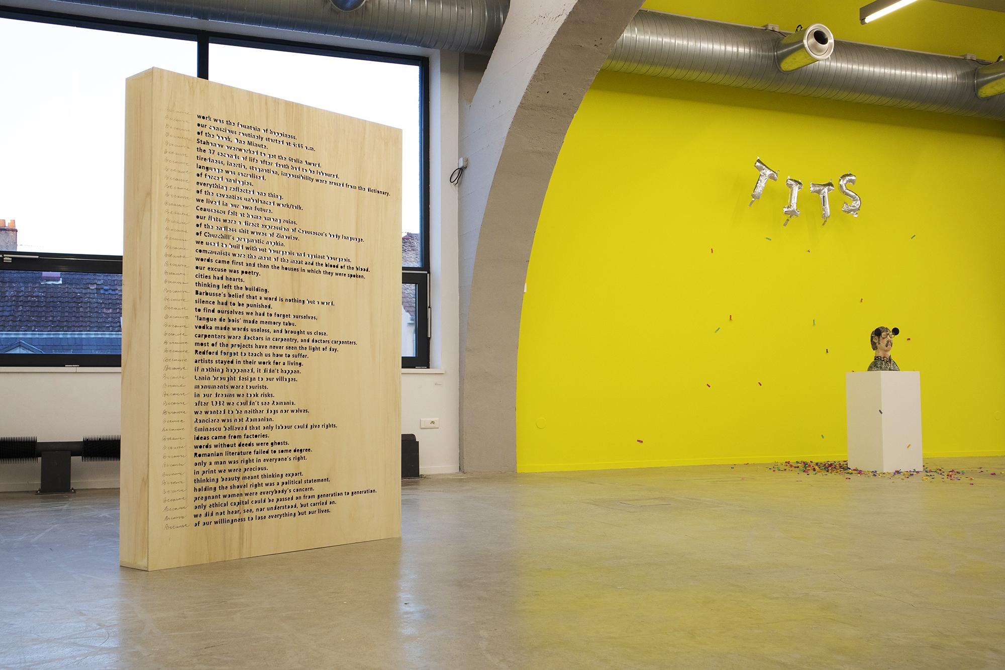 Alex-Mirutziu-Because-Kunsthalle-Mulhouse-1.jpg