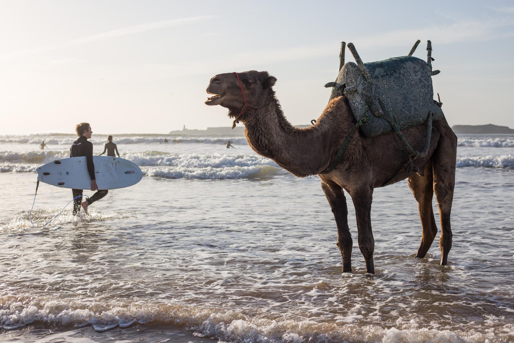 Eskogg_Morocco-1.jpg
