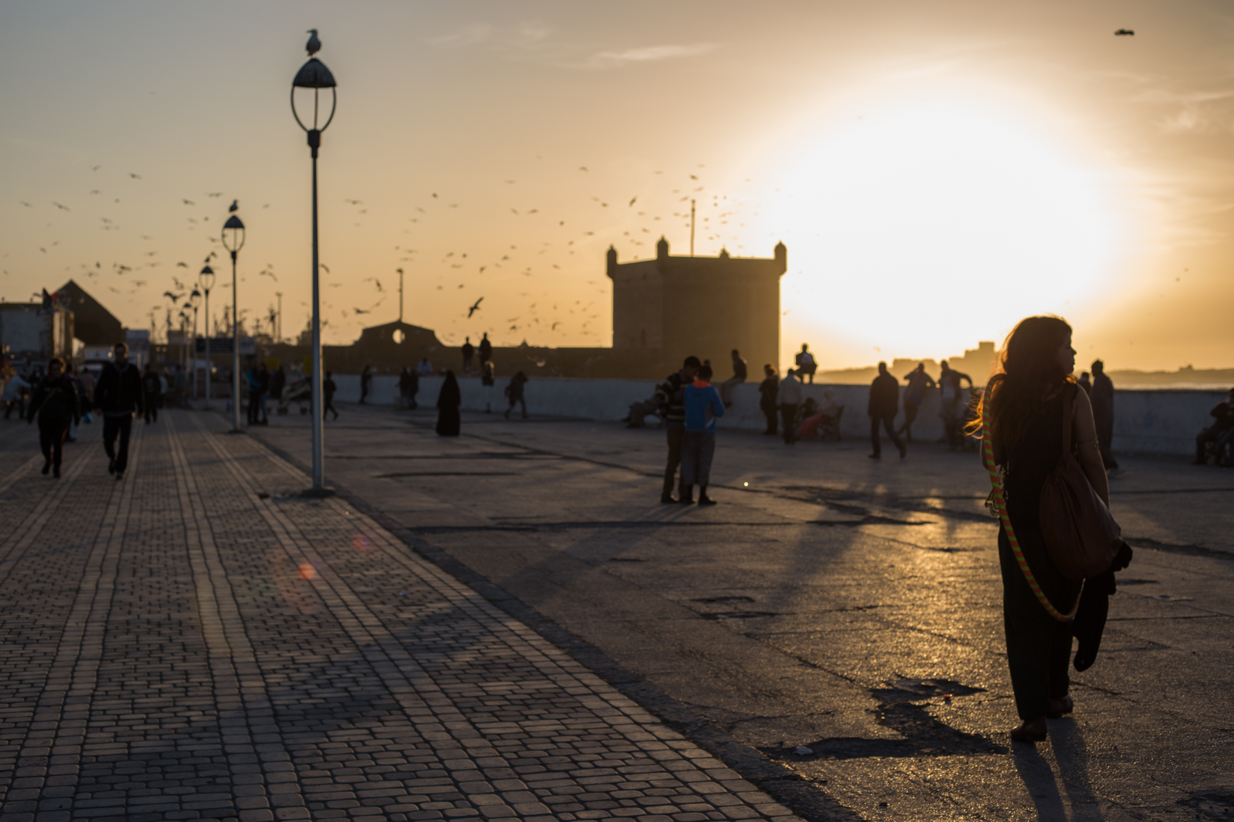 Eskogg_Morocco-4.jpg