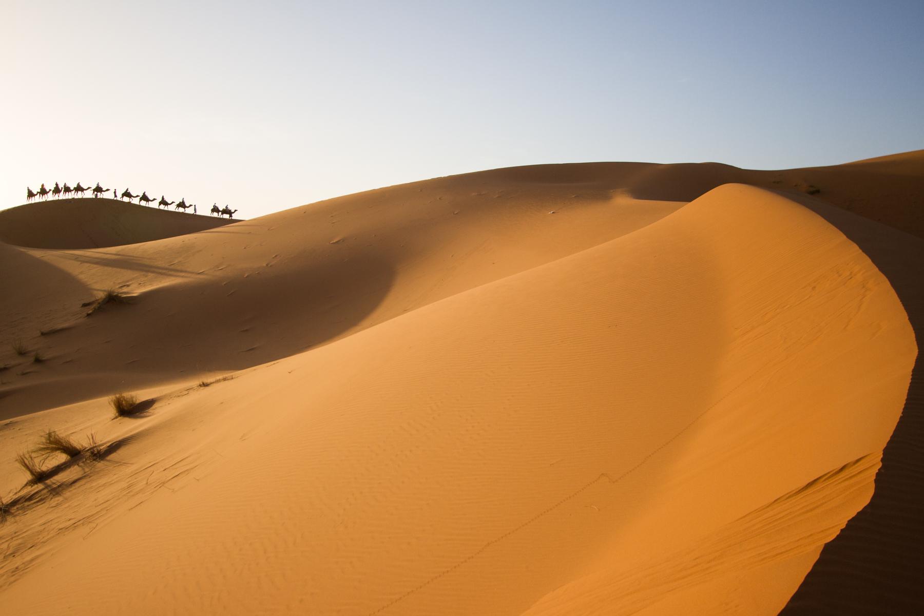 Eskogg_Morocco-34.jpg