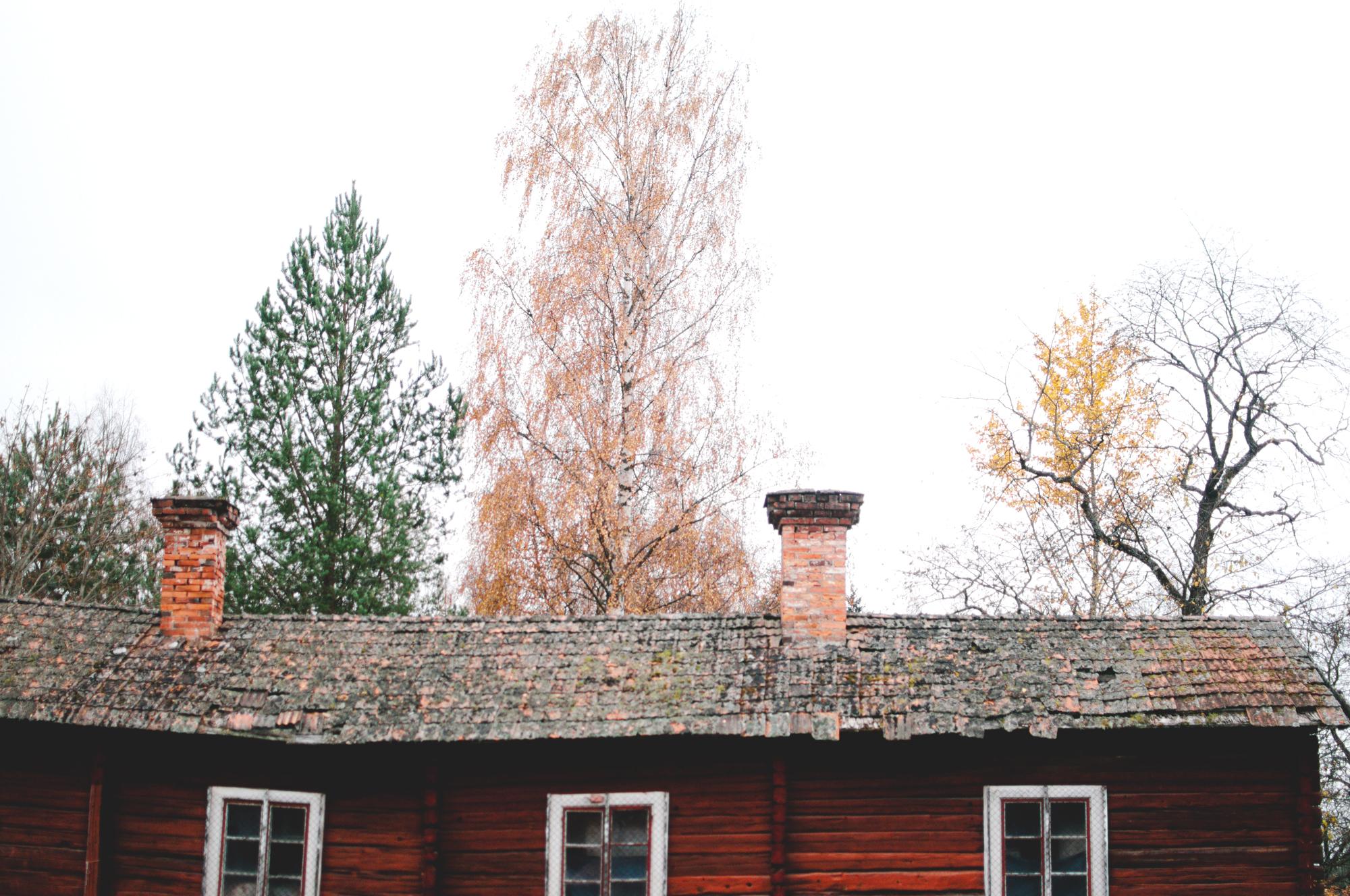 Barkarbacken_Dalarna_MartaVargas-4.jpg