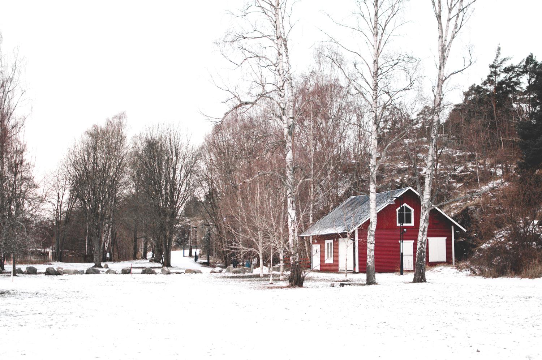 MartaVargas-Vinterviken-Stockholm-2.jpg