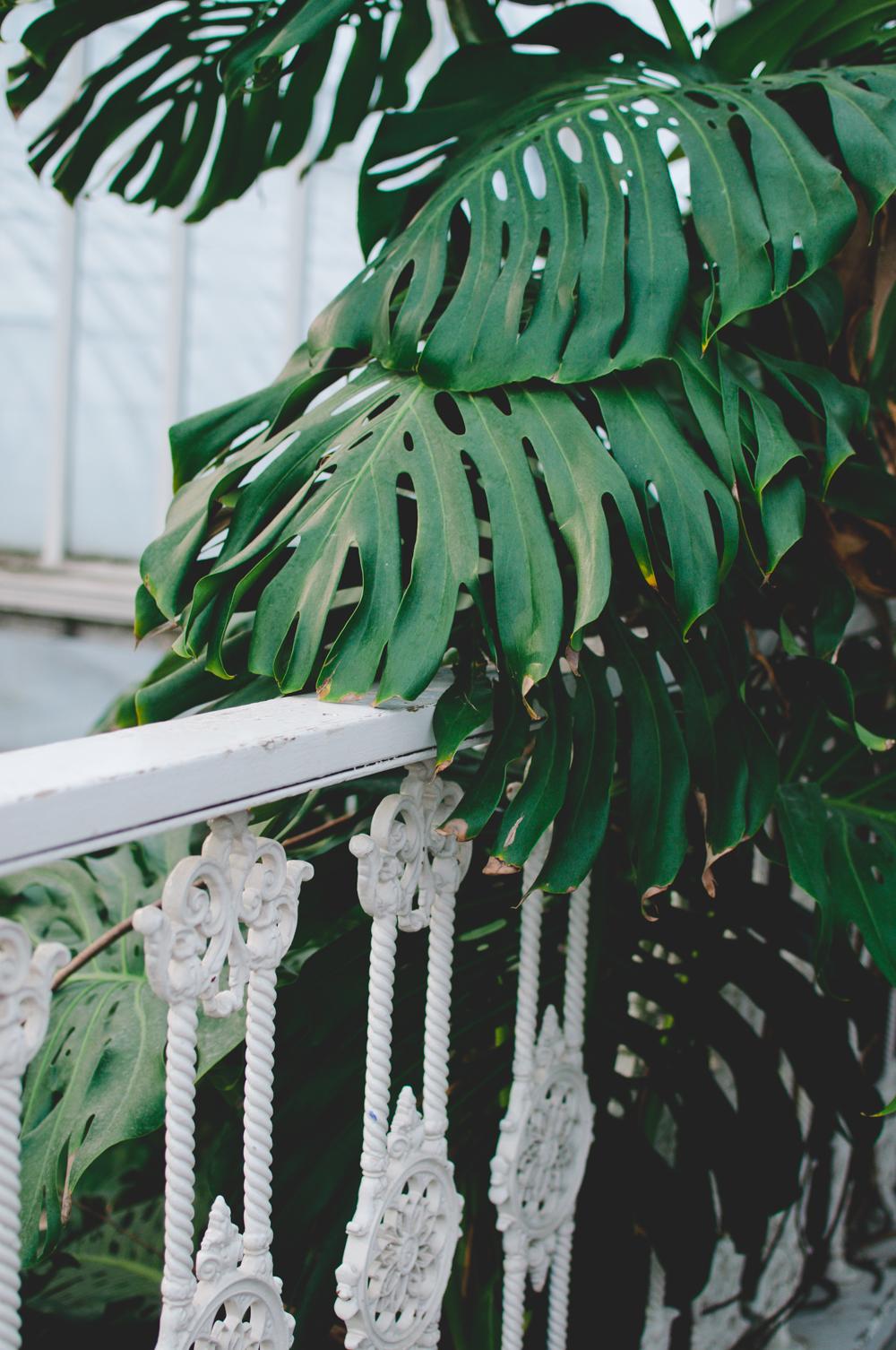 marta-vargas-goteborg-palmhuset-24.jpg
