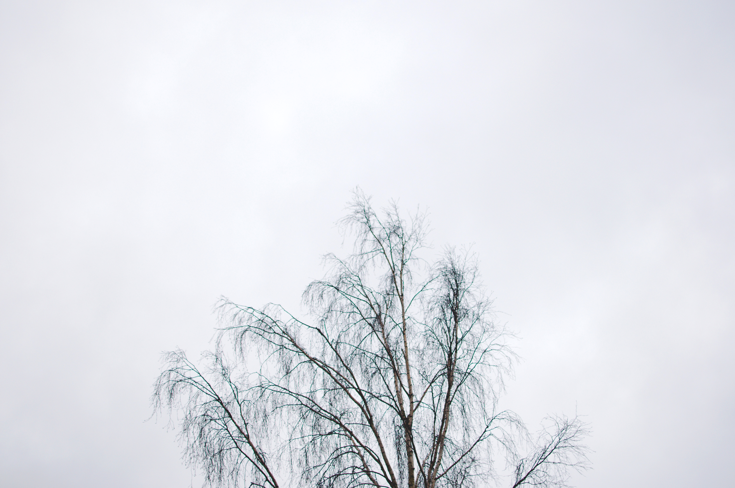gothenburg-marta-vargas-4.jpg