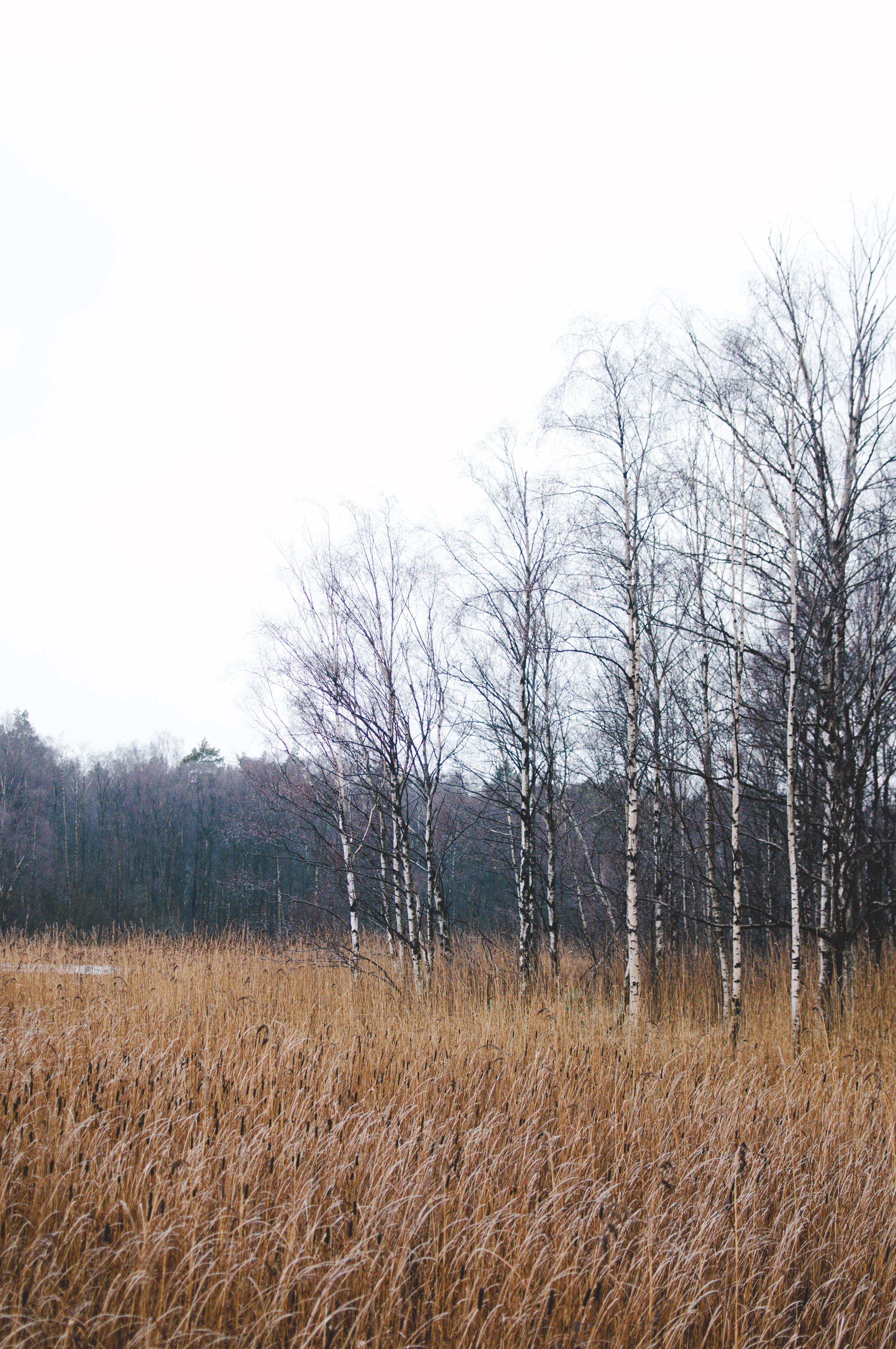 gothenburg-marta-vargas-5.jpg