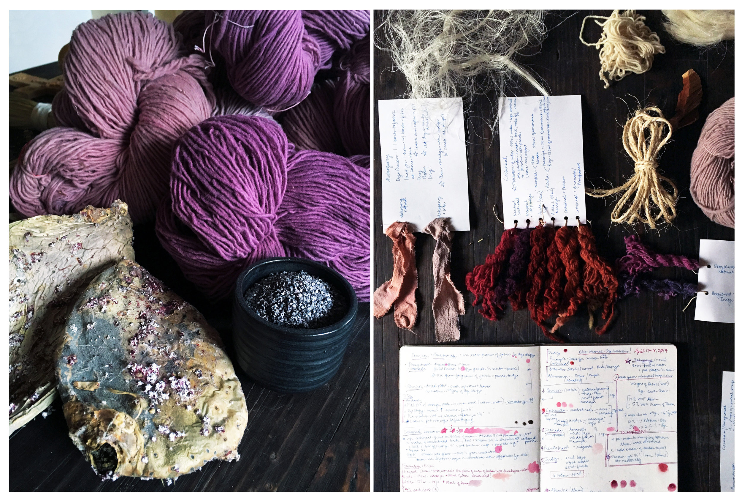 Cochineal Dye Samples,       2017