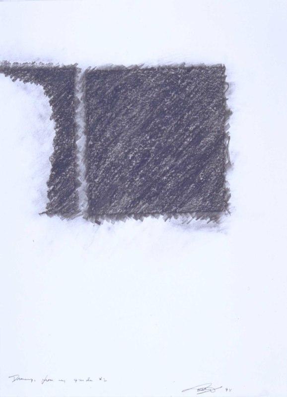Garden-II, 1994, graphite on paper, 30x22.jpg