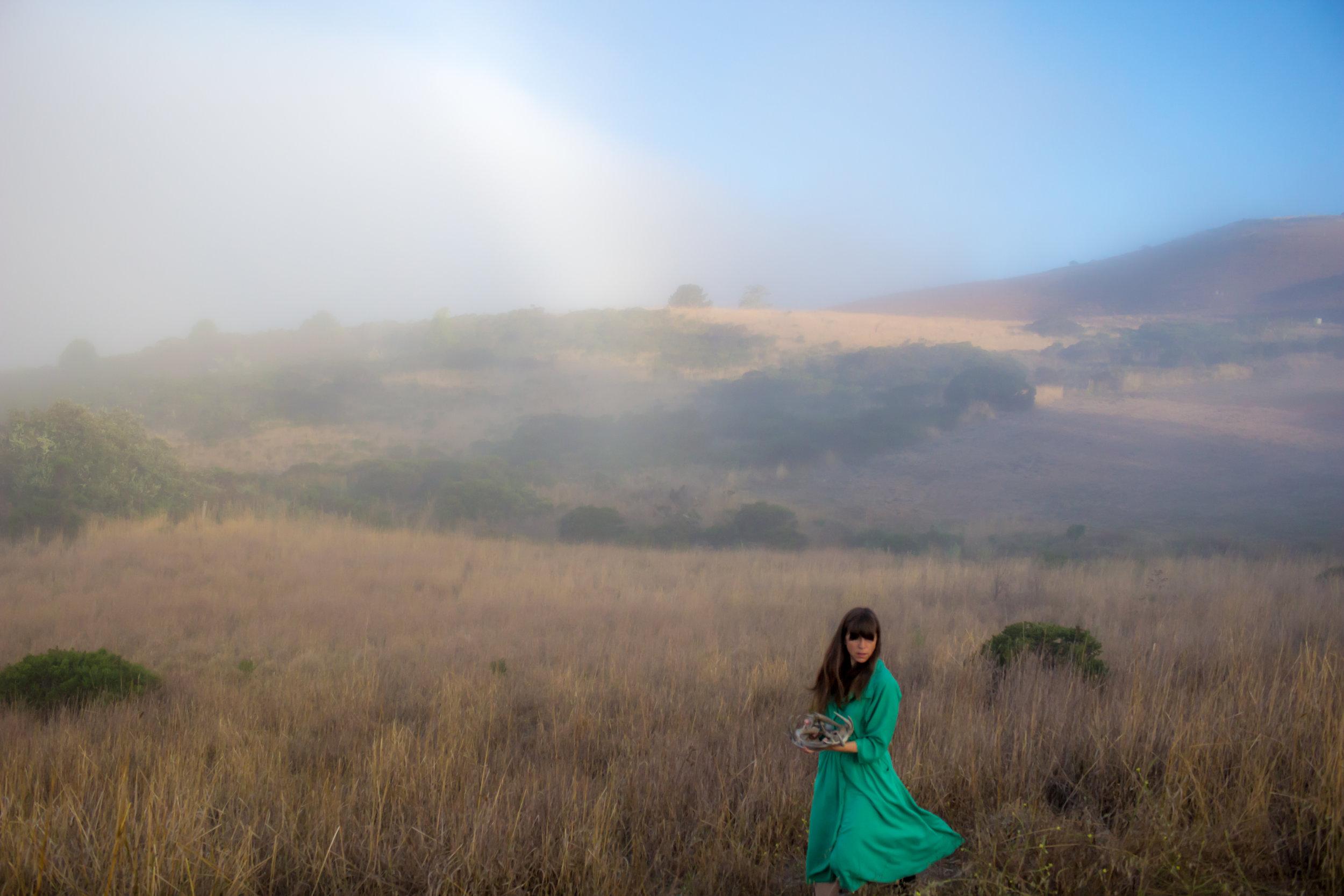 ANTLERED EARTH |Maré Hieronimus ~ Woodside, California
