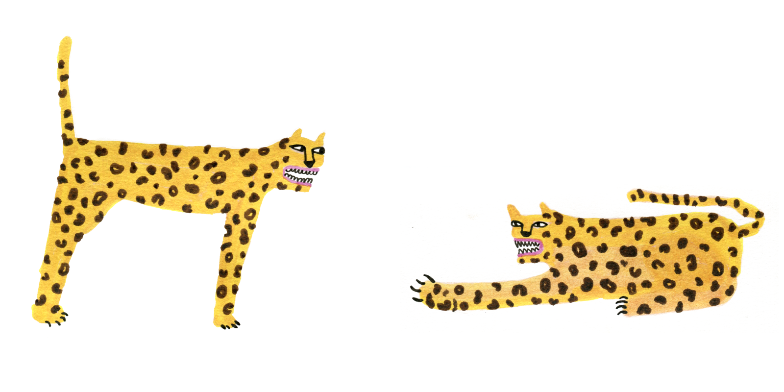 catfight.png