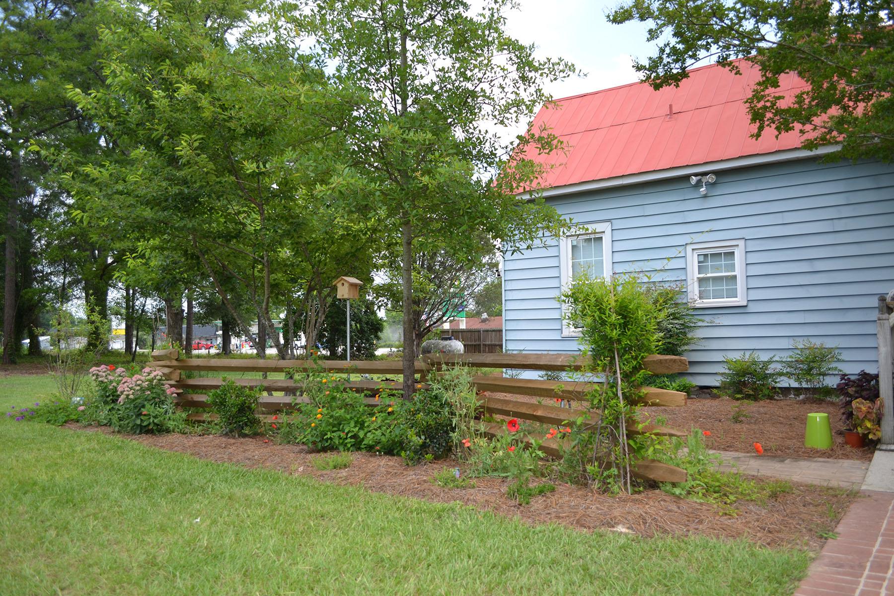 Carolina Fence 3.jpg