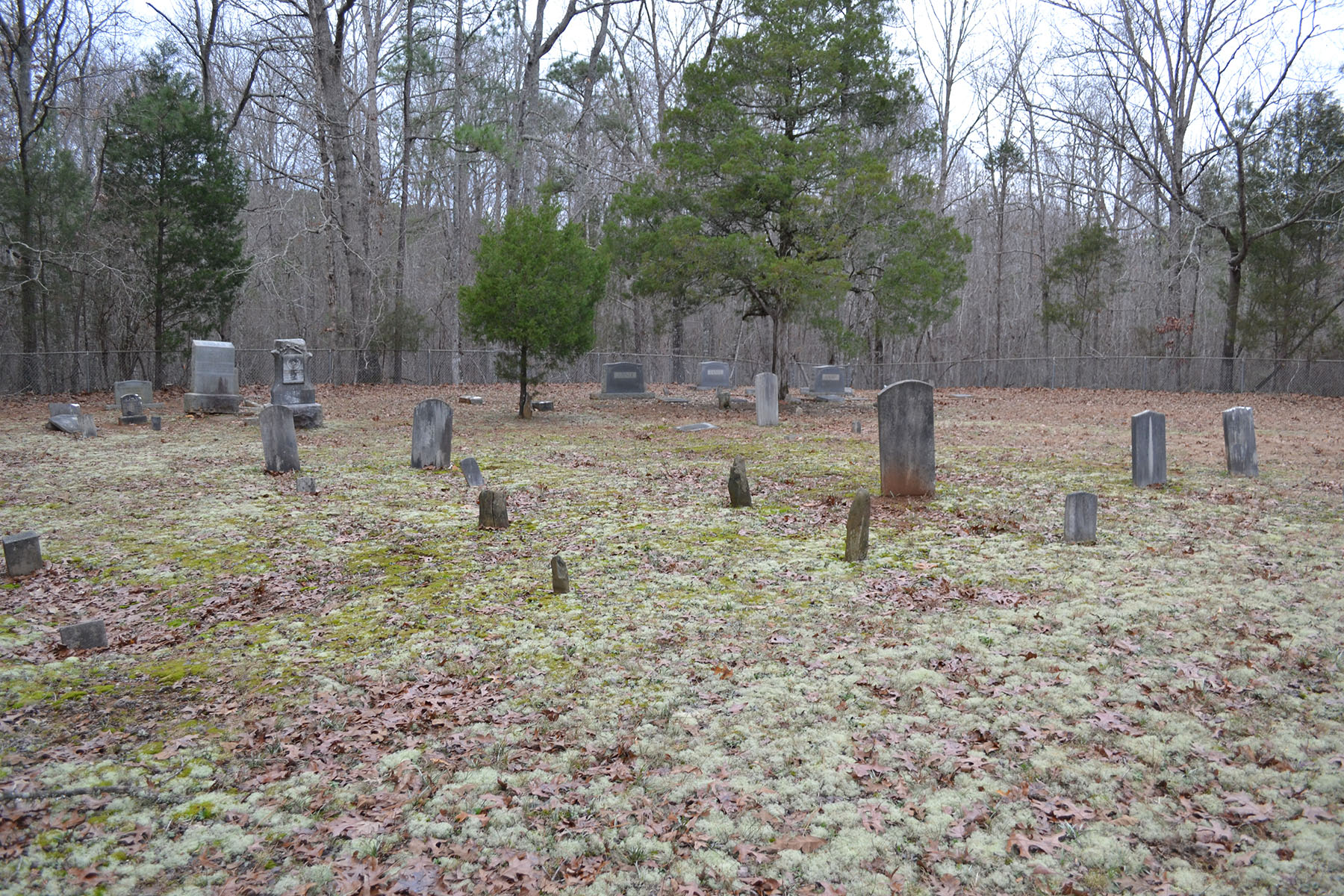 Johnson Hogan Cemetery 006.jpg