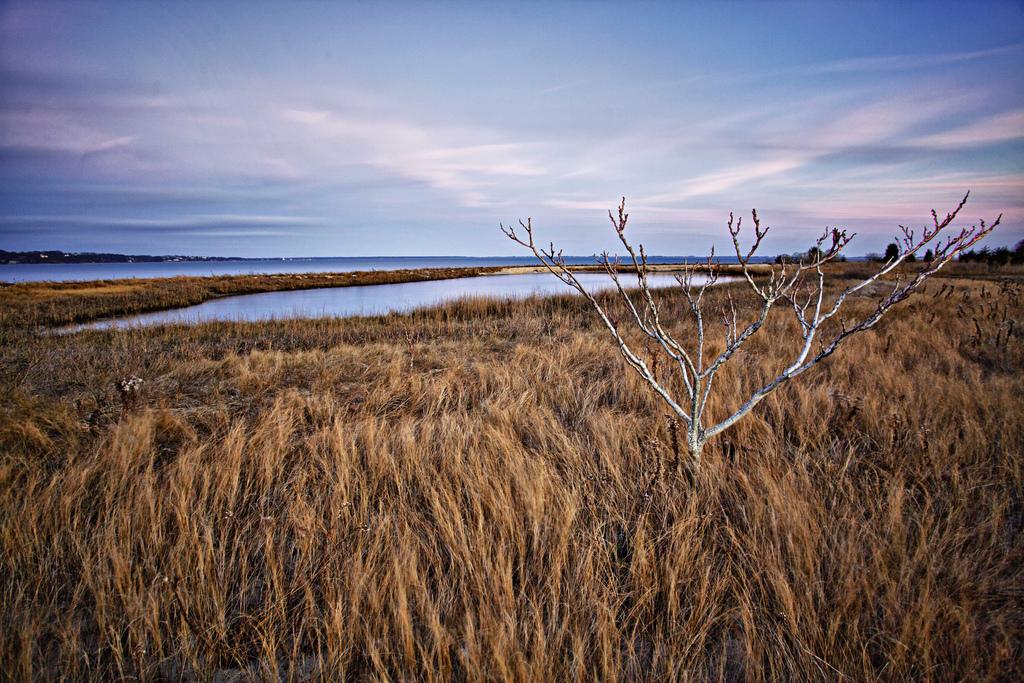 Hampton Bays Photography