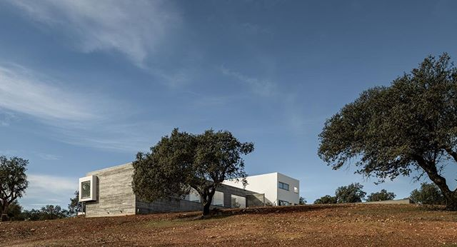 A touch of modern in rural castle country. 👌 @casa_azimute #portugal🇵🇹 #portugalarchitecture #estremoz
