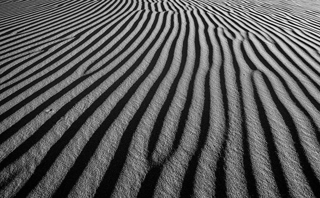 Texture study of the Sahara Desert in 🇲🇦 Morocco. 🐪  soon to be a rather large print 🤓. #sand #africa