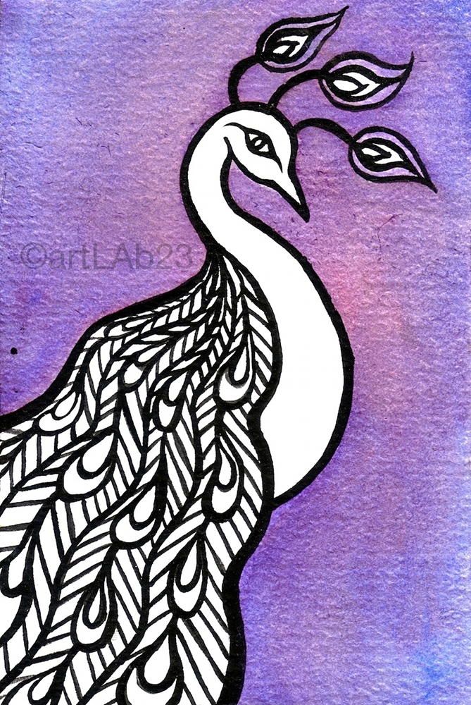 purple_pcock-print.jpg
