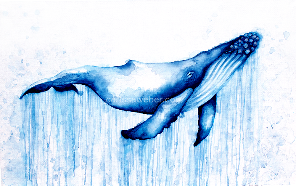 EDIT1-DRIPWHALE.PNG