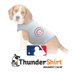 Thunder shirt   These shirts calm dogs that get anxious and fearful.  This company donates thousands of these shirts to local rescues and animal shelters to help calm anxious dogs so they can be adopted.     http://www.thundershirt.com