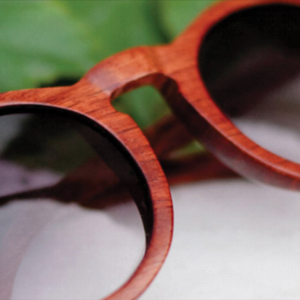 proof eyewear   Proof Eyewear makes eyewear from wood and other materials which are sustainable, renewable and biodegradable. Proof Eyewear donates to a number of different charities as well as donating a portion of each sale to build two eye clinics in India.      http://www.iwantproof.com