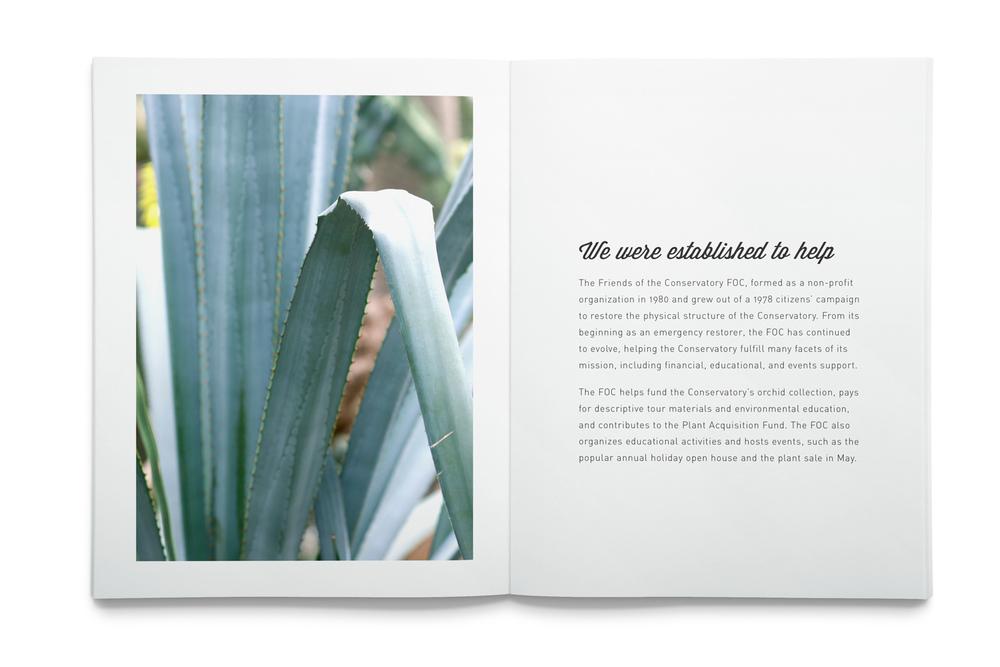 Print / Photography