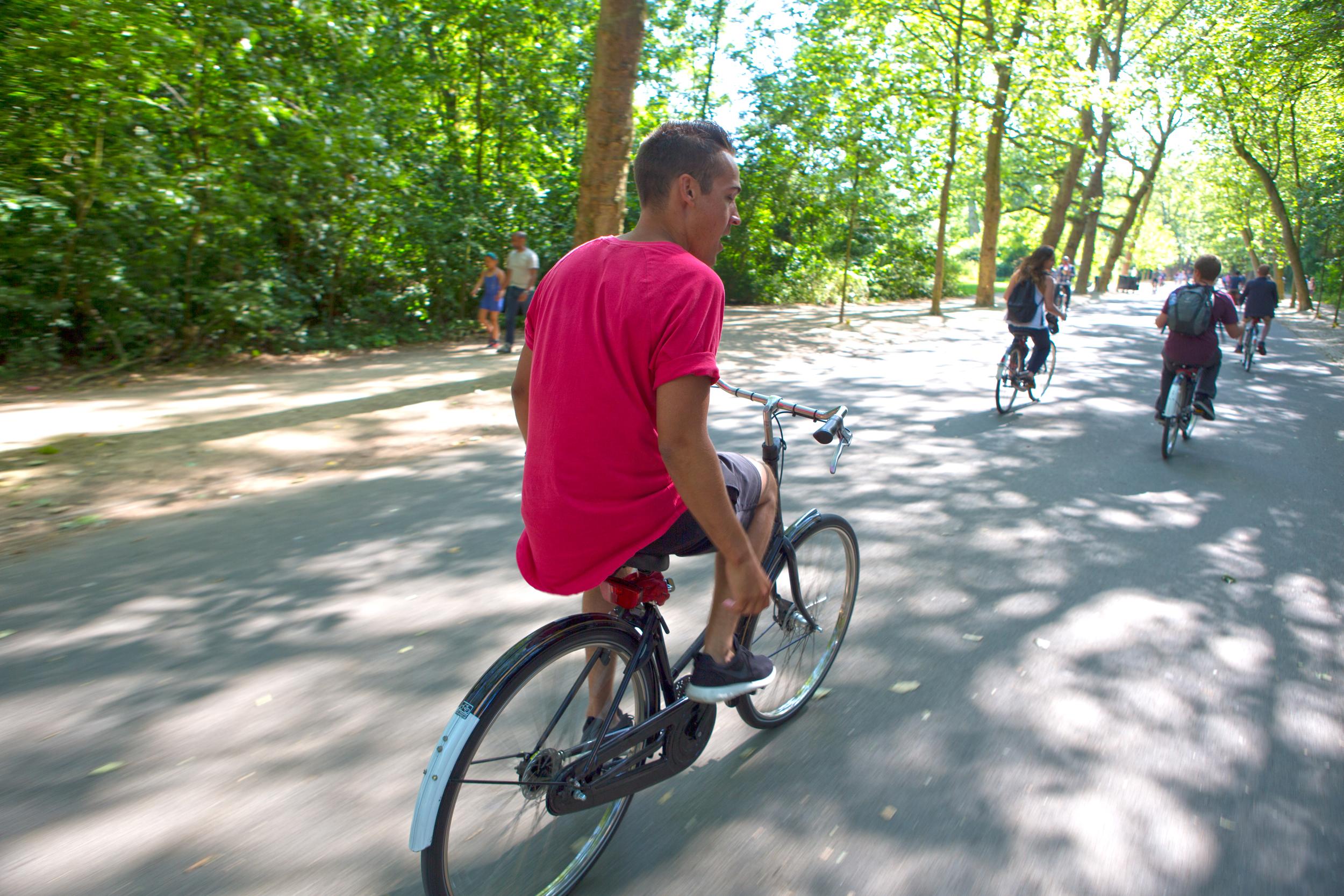 Biking in the park.jpg