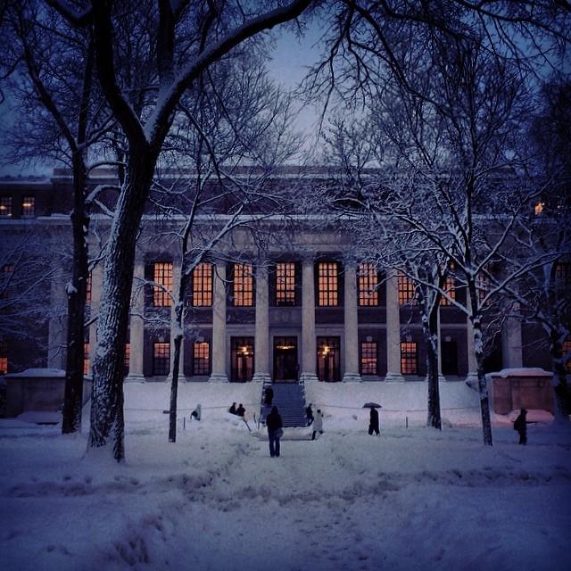 Zaśnieżony Harvard