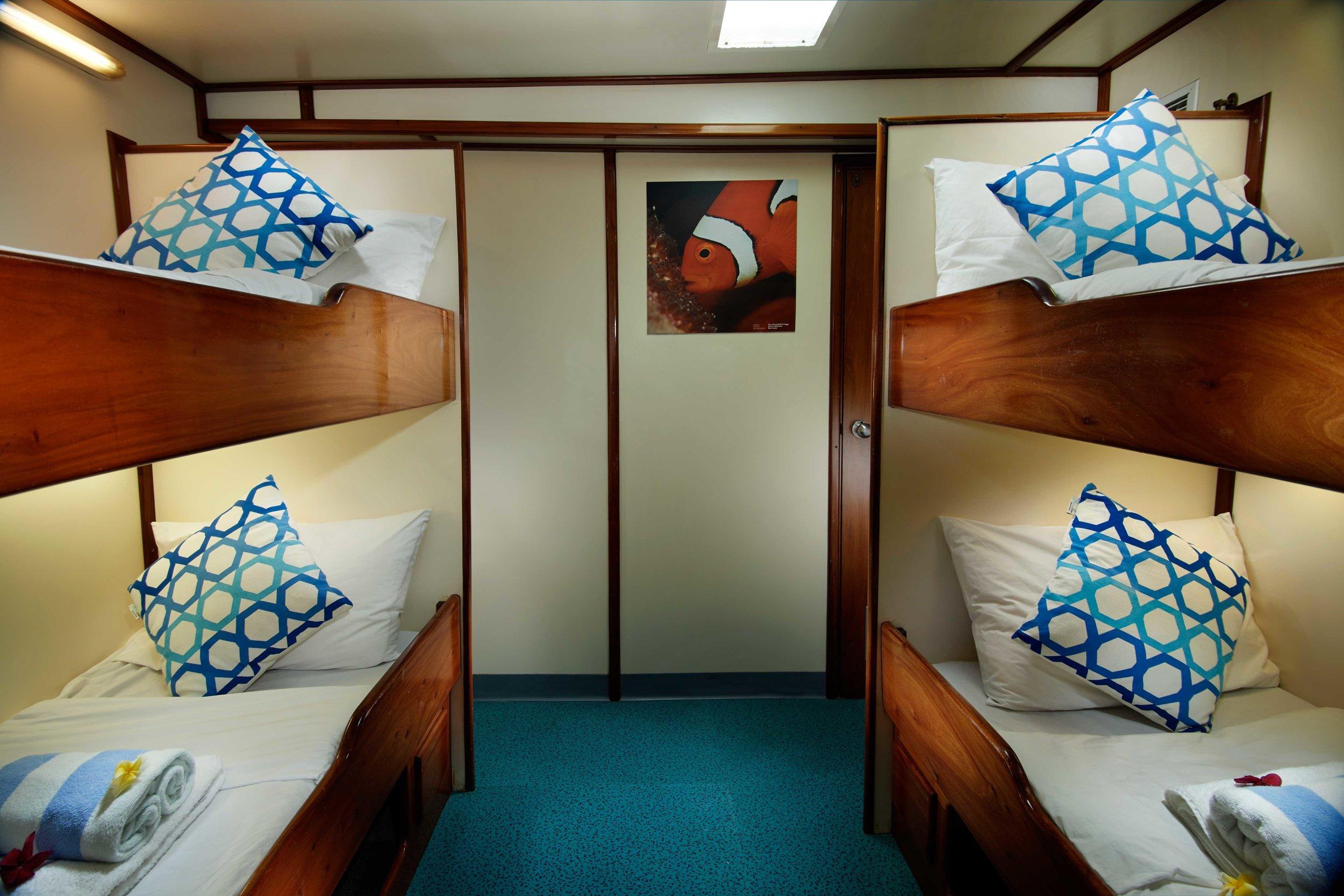 cabin_11.jpg