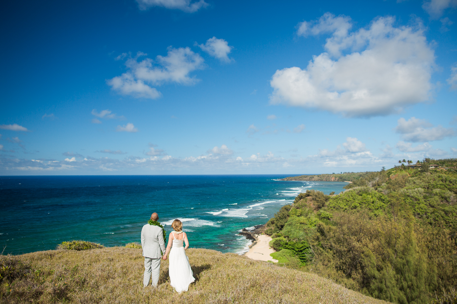 Hawaii Elopement with a Breathtaking View