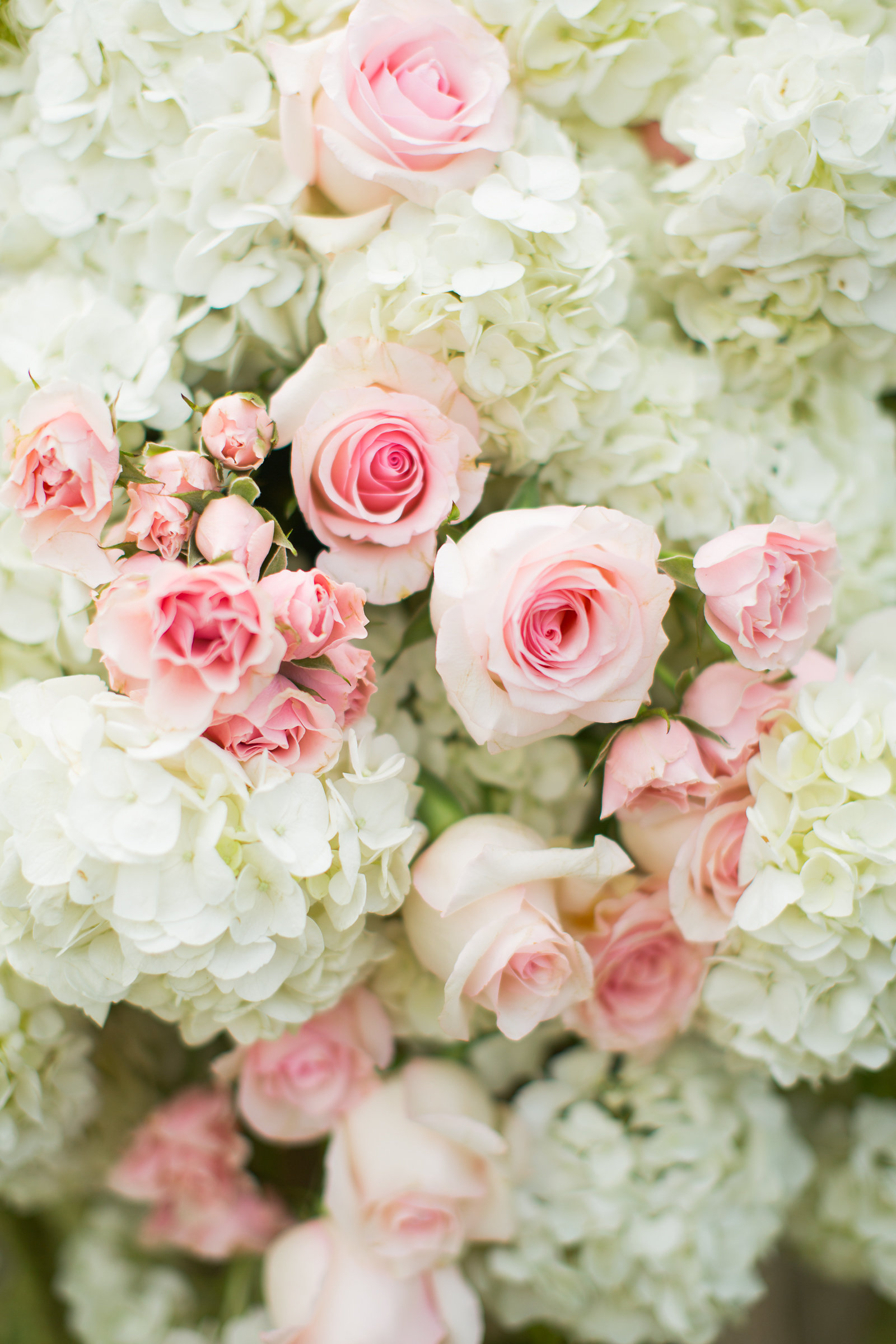 Ceremony Decor Made of Hydrangeas and Pink Roses