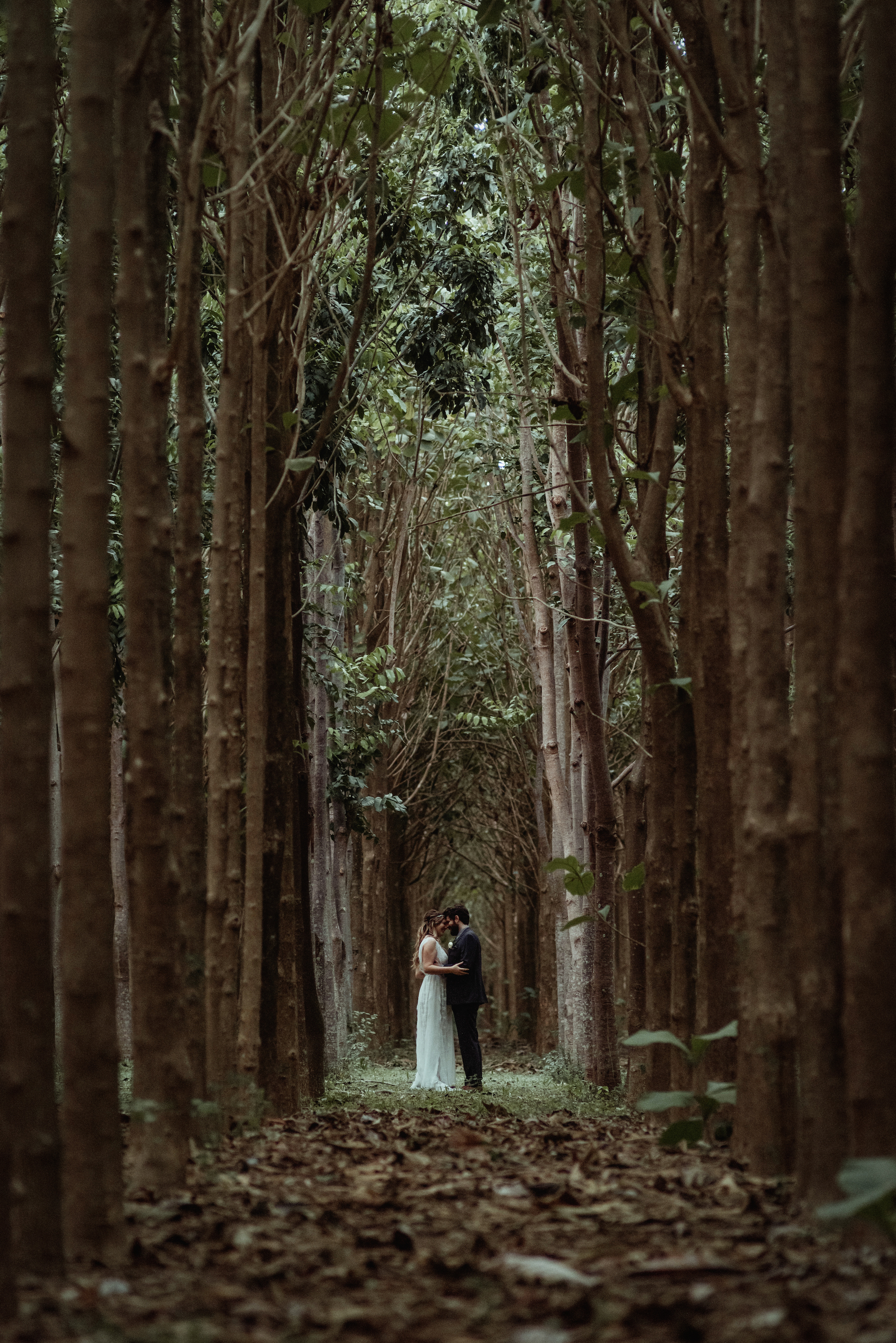 Elopement at One of Our Signature Locations on Kauai