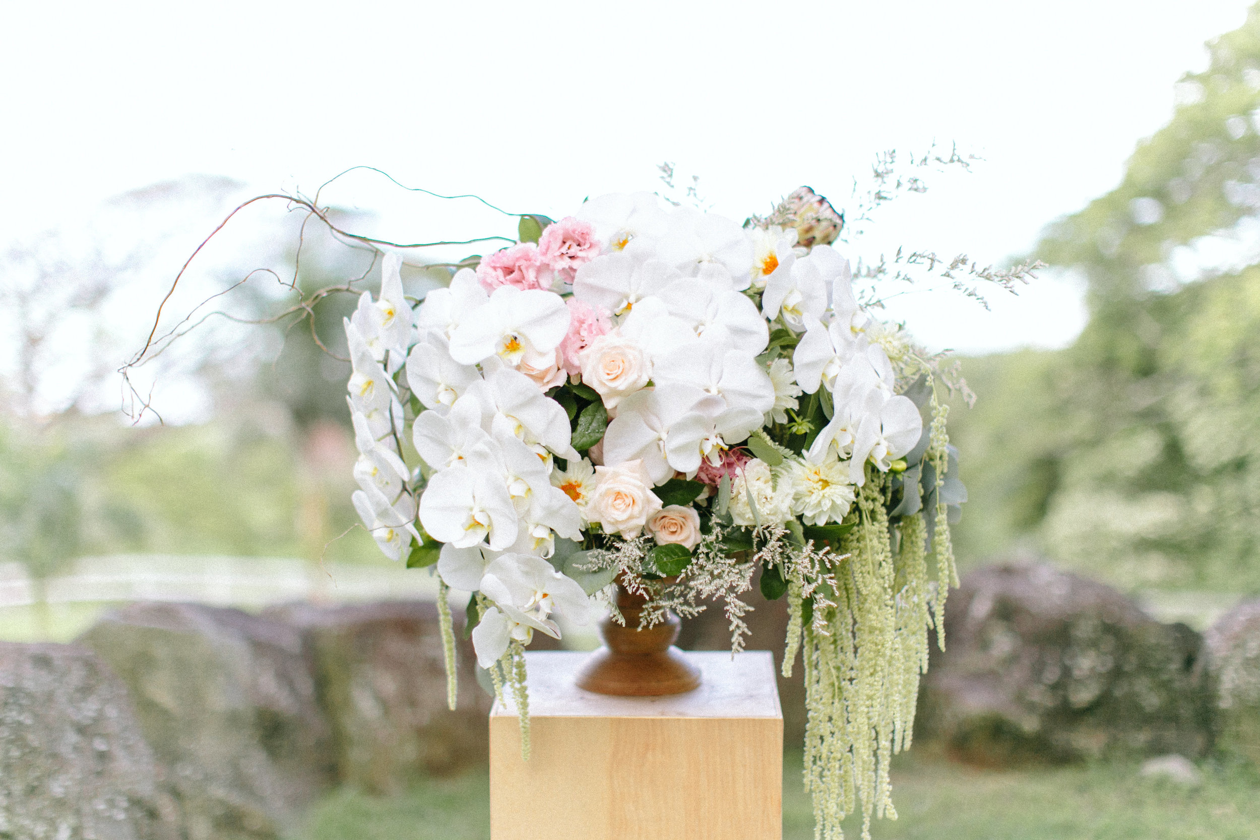 Orchid Arrangements are Essential to Our Modern Boho Collection