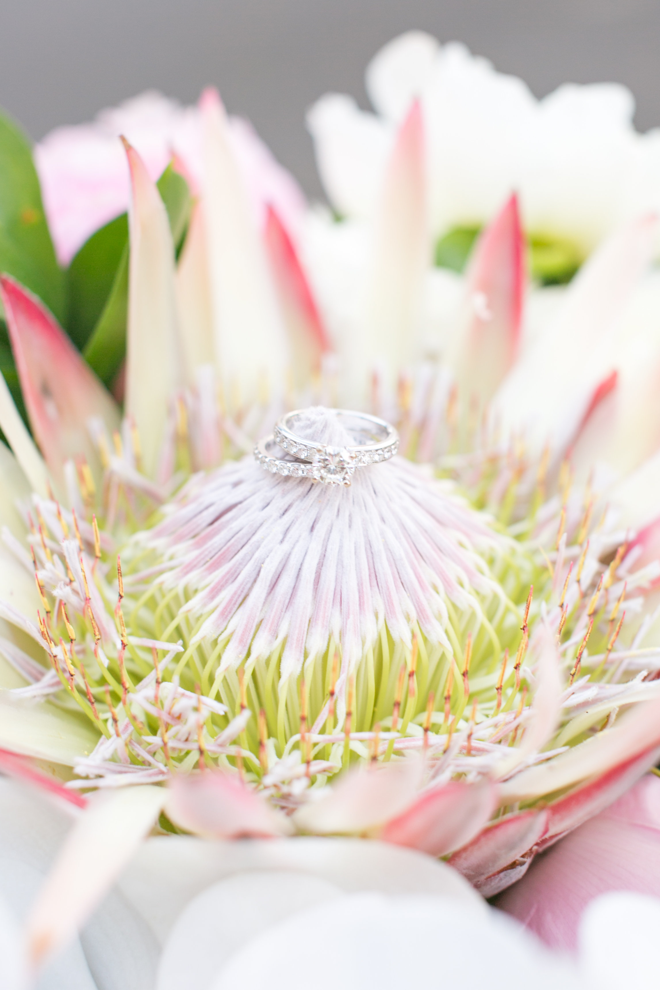 Wedding Bling and a Beautiful King Protea Flower