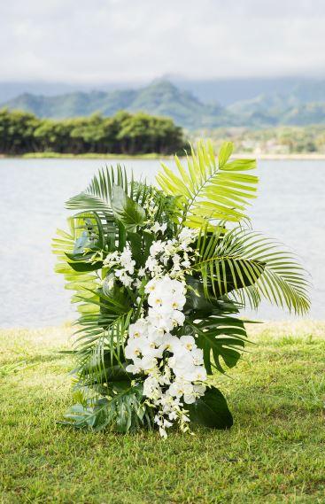 tropical one.JPG