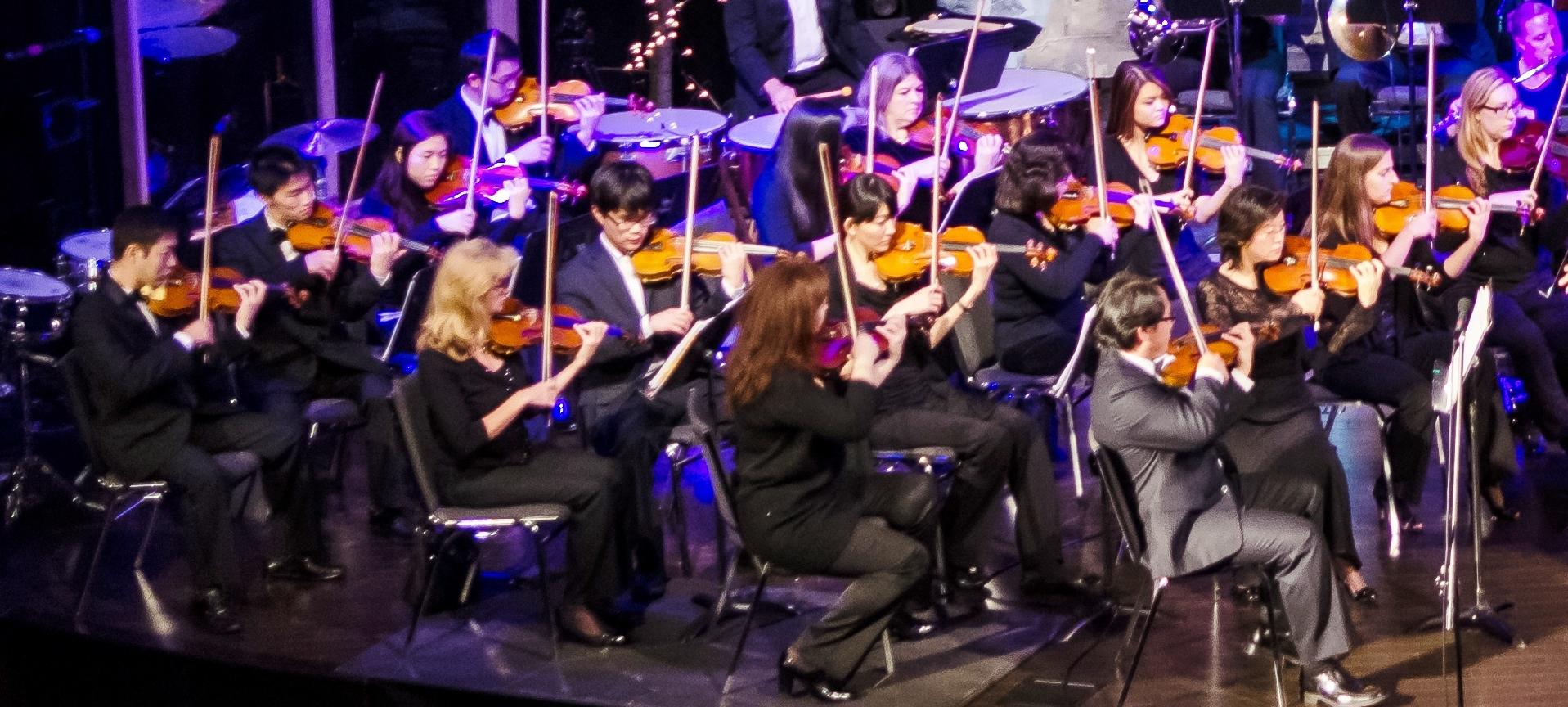 Violin Section.jpg