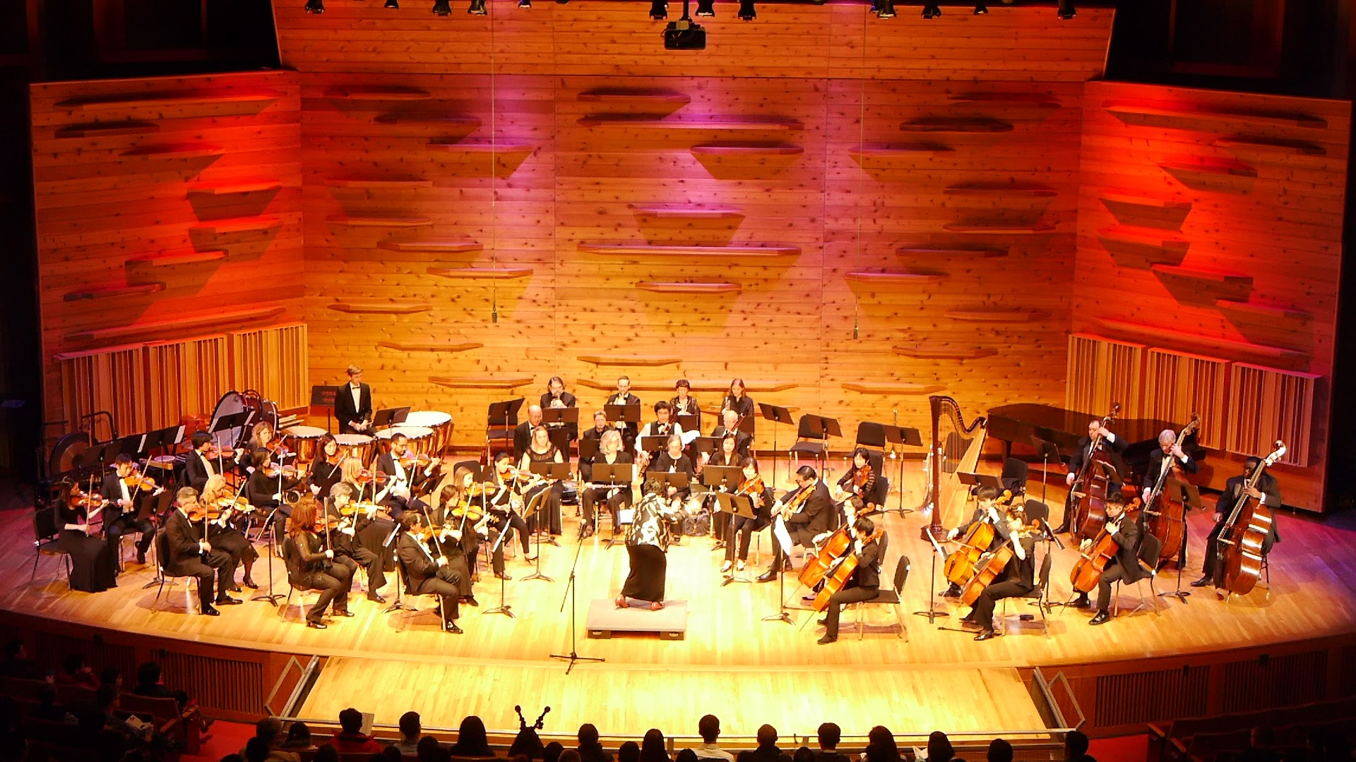 The orchestra in an inspiring and engaging performance of Mozart Symphony No. 35