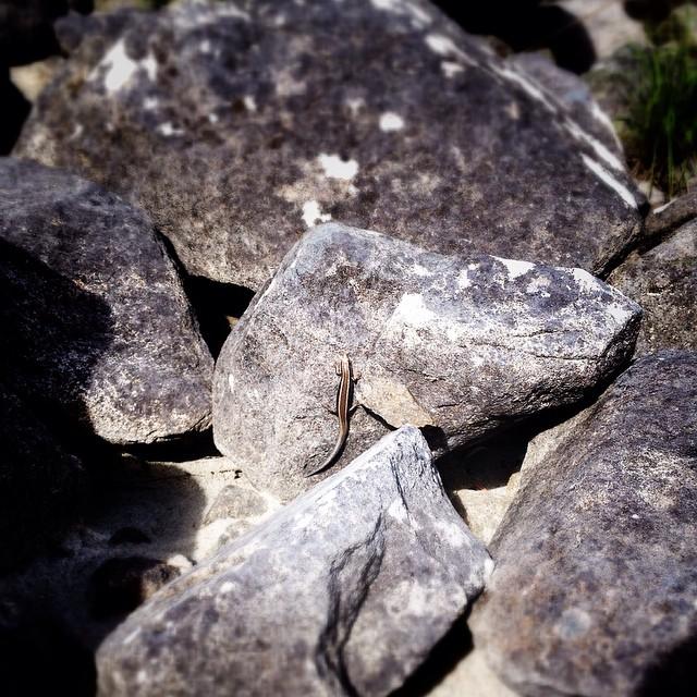 #bouldering