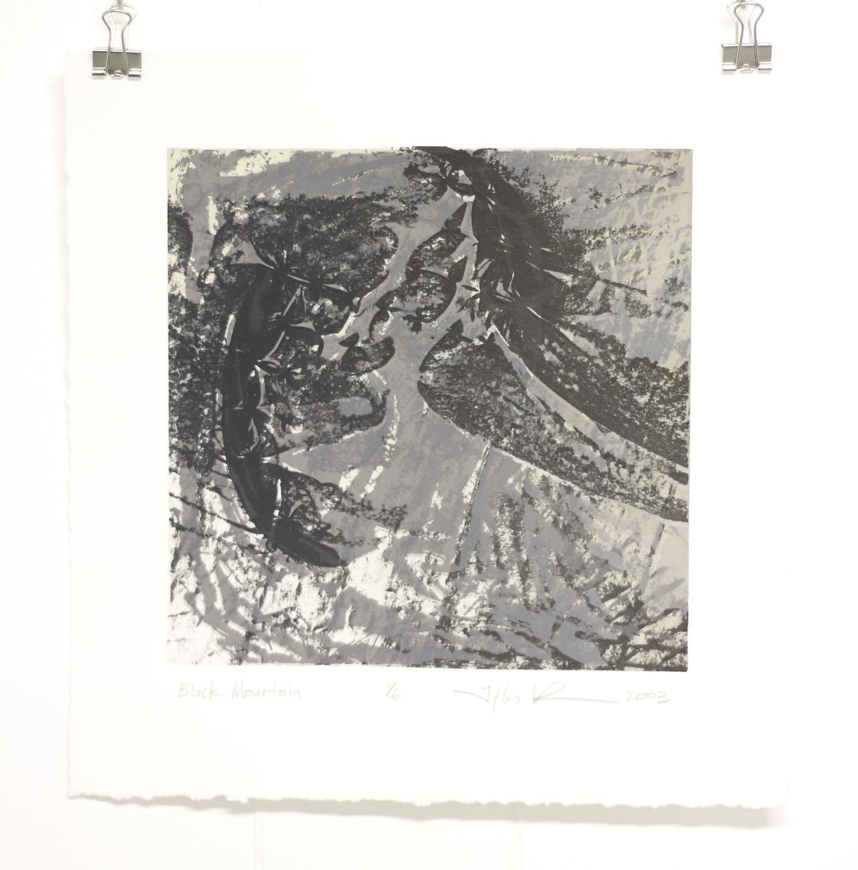 Black Mountain, 2003