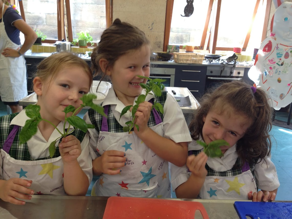 Kitchen Garden - Your child's class would love to see you there