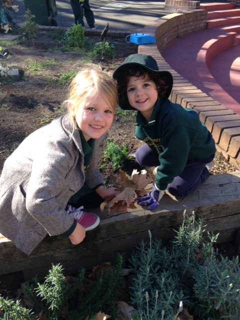 Kindergarten (KC) enjoyed their first Kitchen/Garden class pulling weeds and making Anzac Biscuits.    SEE OUR PICS