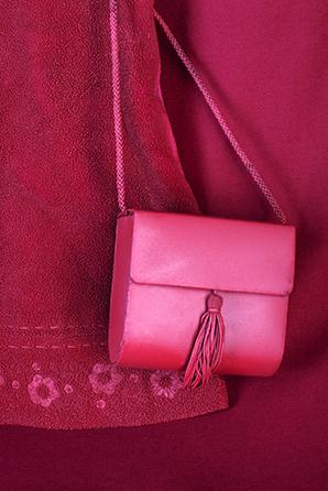105x148-dressbag-eme-lr.jpg