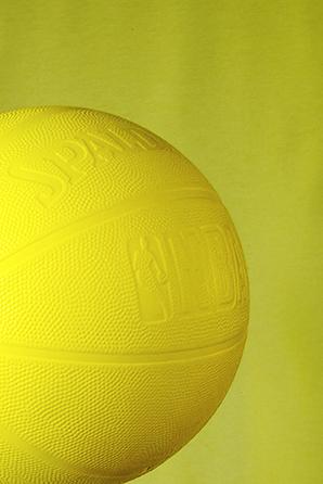 105x148-ball-eme-lr.jpg