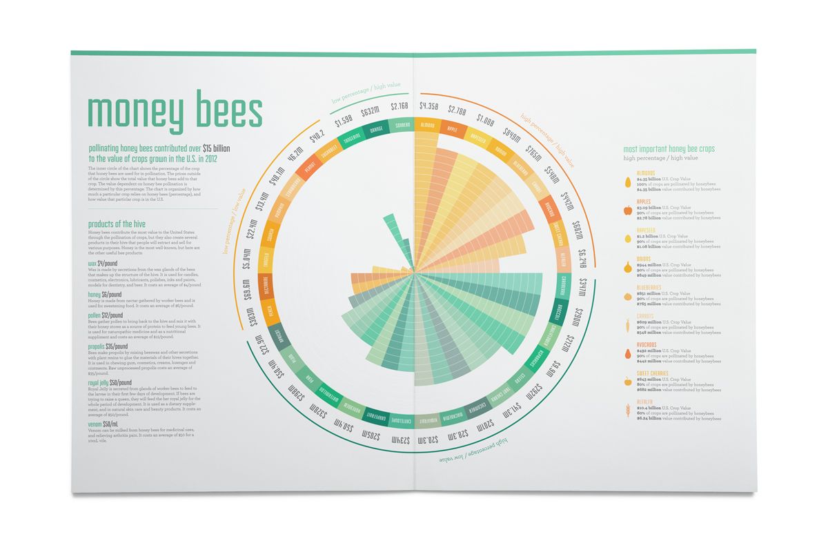 Honey bees contribute over $15 billion to the value of crops through pollination in the United States. This chart breaks this number down by showing exactly how much the bees contribute to each crop, and analyzes the most important crops in our country that depend on honey bees. It also explores the values of other products that hives produce.