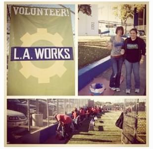 MLK Day of Volunteering