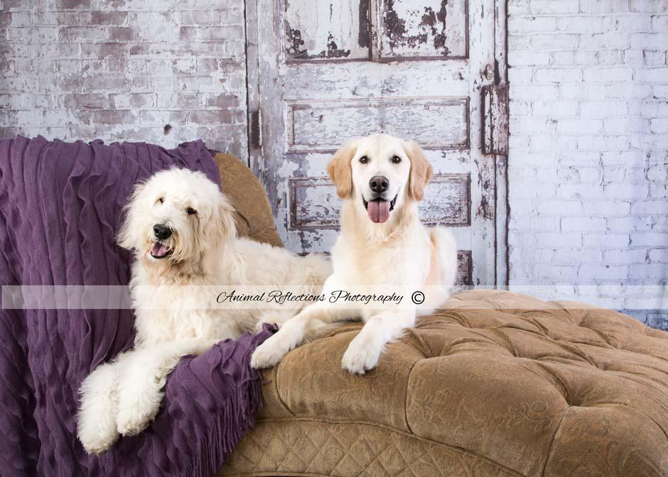 Oliver&Serafina-049.jpg