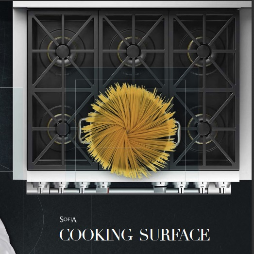 Fulgor Milano  Sophia Cooking Surface.jpg