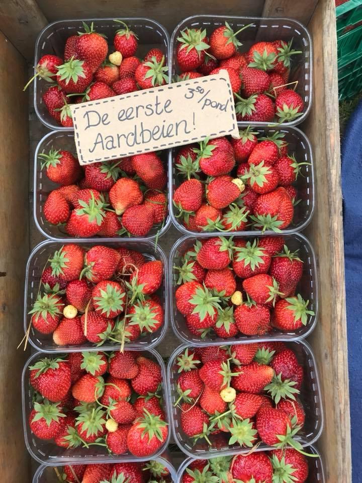 Aardbeien eerste.jpg