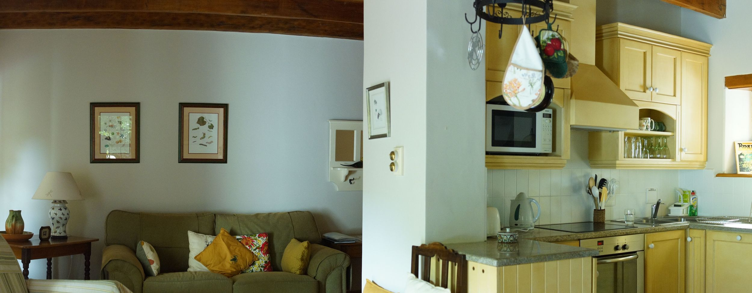 FT lounge kitchen pana.jpg