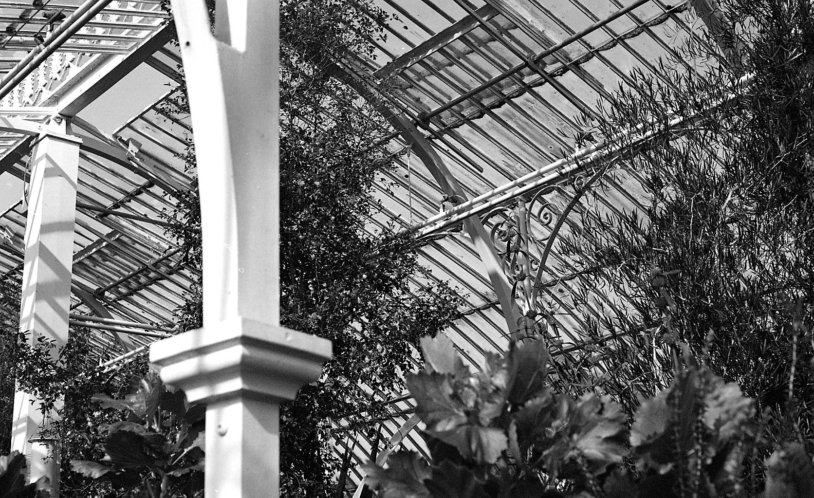 BotanicGardens015.jpg